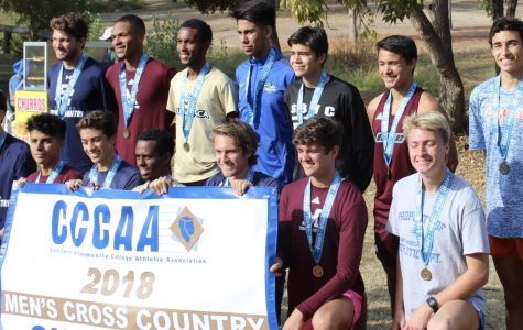 Giant cross country finish top 10 in State
