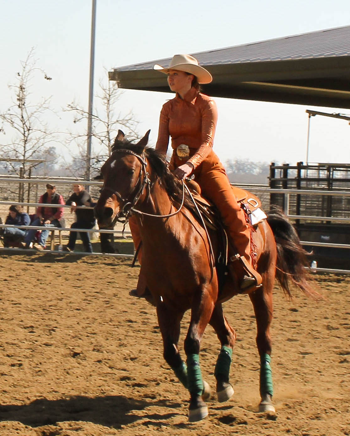 Did you know that COS had an Equestrian team?