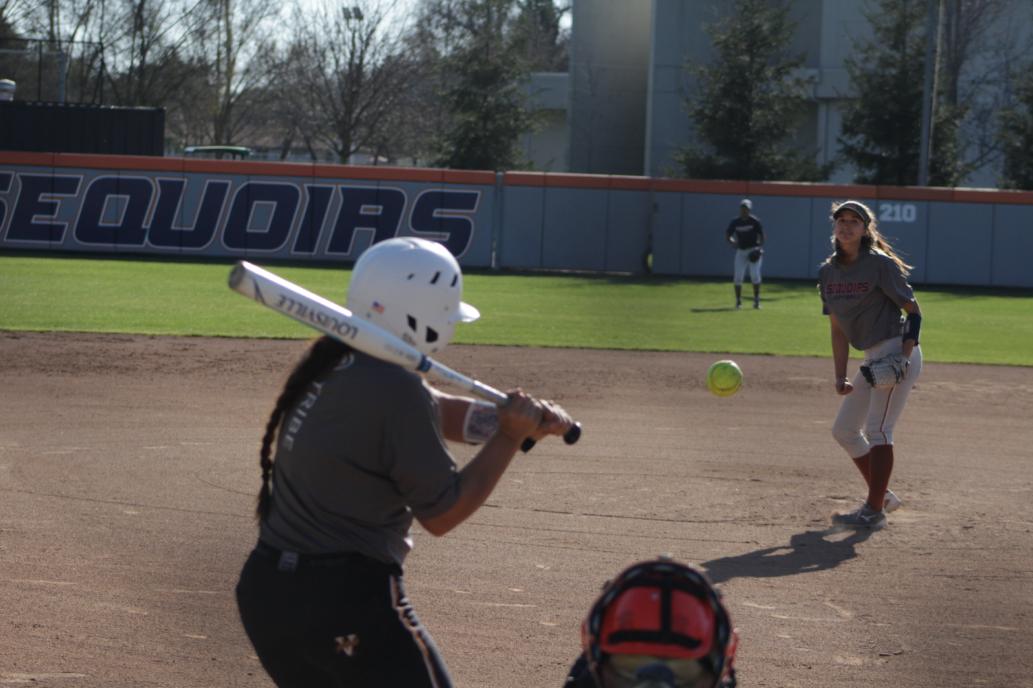 Softball is in full swing.