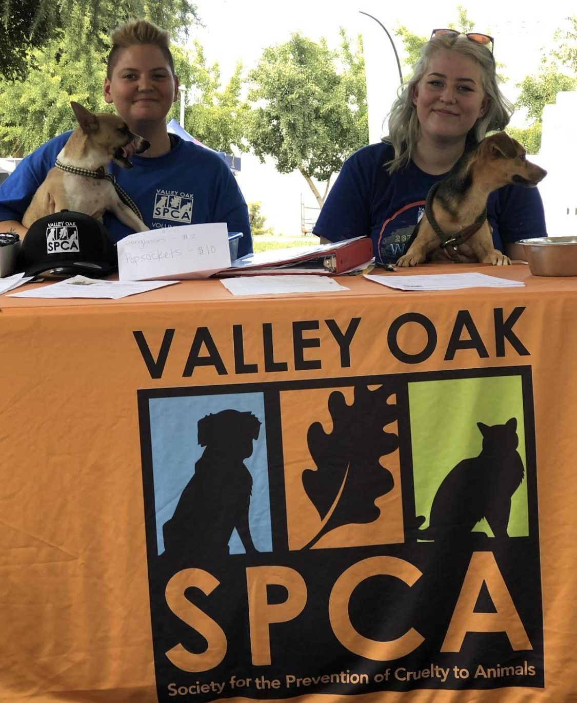 SPCA volunteer coordinator Bree Scarlet (right) and a volunteer (left) out looking for volunteers and potential homes for some very playful puppies.